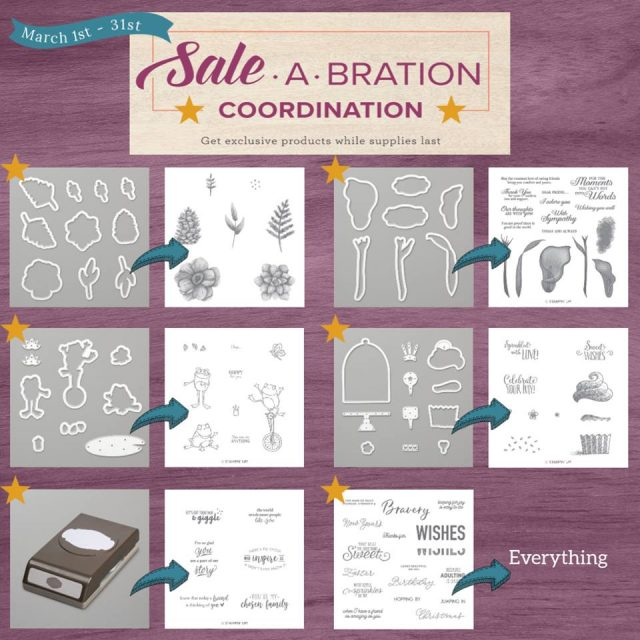 Sale-A-Bration Coordination Products
