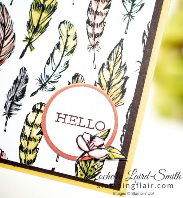Bird Ballad card with feathers and Hello greeting